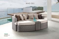 WAO-501
